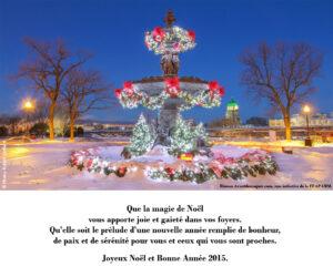 Master Noël_RéseauxSociaux2014